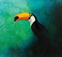 Wildlife - Toco Toucan by Zii Genek