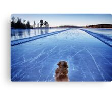 On ice Canvas Print