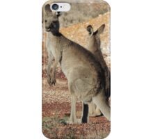 Kangaroos - White Cliffs iPhone Case/Skin