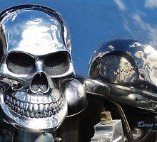 Skulls and Skies by danahunter