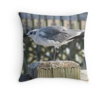 Seagull, Folly Beach Throw Pillow