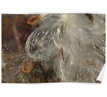 Angel Hair II Poster