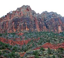 Slice of Zion #3 by Mindy Miller