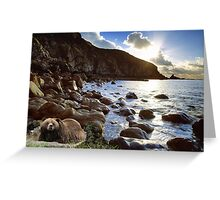 1001-Pacific Northwest Sunrise Greeting Card