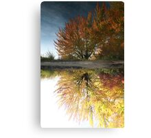 To Reflect Canvas Print