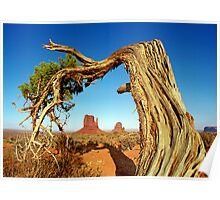 Monument Valley Tree Poster