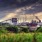 Winnington Works from Anderton nature trail ( northwich) by Jon Baxter