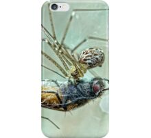 The Spider and the Fly  (1829)  by Mary Howitt iPhone Case/Skin