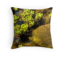 A study of shape and texture Throw Pillow