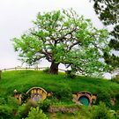 Bag end on Bagshot row, Hobbiton. by Yool