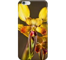 Donkey Orchids iPhone Case/Skin