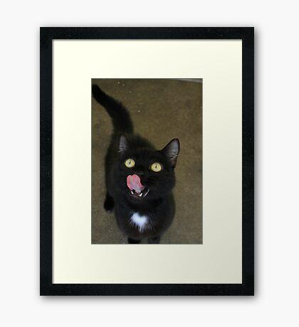 Woo Winnie Framed Print