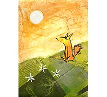 yellow dog on a hill Photographic Print