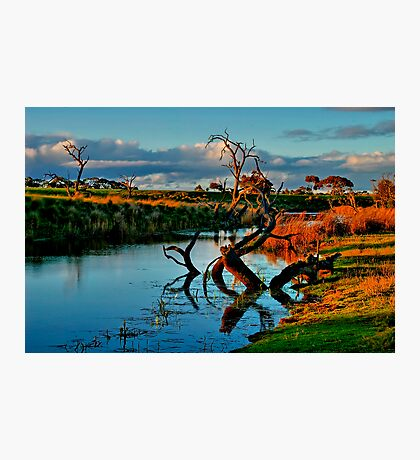 """Evening Mirror"" Photographic Print"