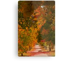 Bright Path Metal Print