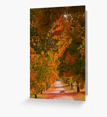 Bright Path Greeting Card