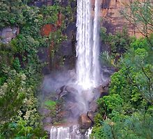 Fitzroy Falls by Penny Smith