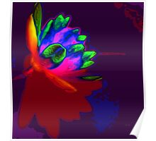 Water lily abstract pop art Poster