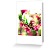 New beginnings Greeting Card