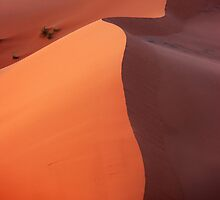Dune in the dusk by Peter Hammer