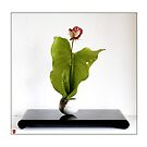 Ikebana-017 Greeting Card by Baiko