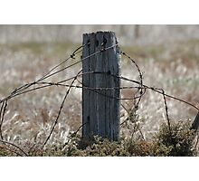 Old world fencing Photographic Print