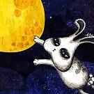 Moon Chasing by MissKoo