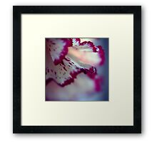 Colour Of Life XXXIII Framed Print