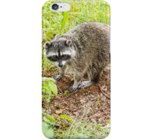 What hole? Racoon iPhone Case/Skin