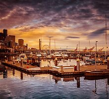 Seattle marinescape by Eti Reid