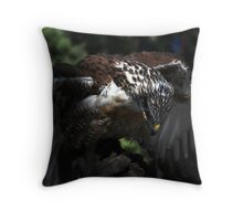 Ferruginous Hawk 2 Throw Pillow