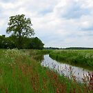 River *The Kuunder* by ienemien