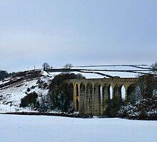 Uplyme Viaduct-Devon.UK by lynn carter