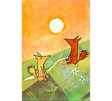 two dogs on a green hill Photographic Print