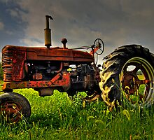 Farmall Field Of Green by Andy Mueller