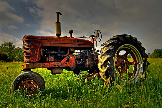 Farmall Field Of Green by Andreas Mueller