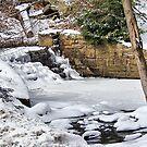 Winterfalls by Monnie Ryan