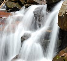 Amicalola Falls by Chris Chandler