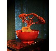 Sea Tree Photographic Print