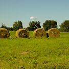 Bales by stopthat