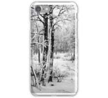 Black and White Frost iPhone Case/Skin