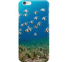 Youngsters iPhone Case/Skin