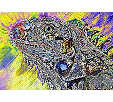 phsycadelic iguana Photographic Print
