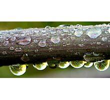 Bubbles, bubbles Photographic Print