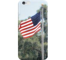 Naval Base Flags iPhone Case/Skin