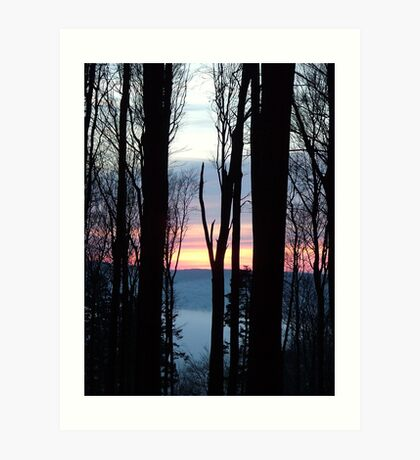 Hiver / Winter Art Print