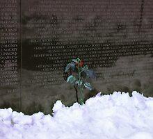 Vietnam Veterans Memorial 3 by Kenshots