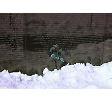 Vietnam Veterans Memorial 3 Photographic Print