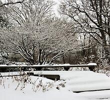 Old Woman Creek In Winter 2 by SRowe Art