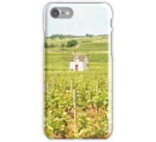 Grapes Growing in France iPhone Case/Skin